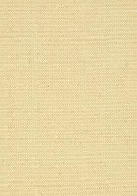 T24339 – tapeta Interweave Bridgehampton Thibaut