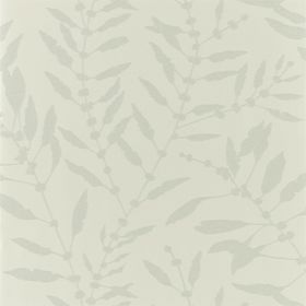 111659 – tapeta Chaconia Shimmer Sand Anthozoa Harlequin