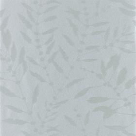 111662 – tapeta Chaconia Shimmer Slate Anthozoa Harlequin