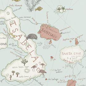 SN213364 – tapeta Galapagos Voyage of Discovery Wallpapers Sanderson