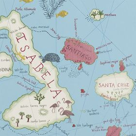 SN213366 – tapeta Galapagos Voyage of Discovery Wallpapers Sanderson