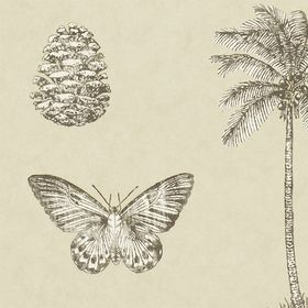 SN213381 – tapeta Cocos Voyage of Discovery Wallpapers Sanderson