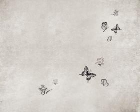 OUTW_MA1301_b – fototapeta Mariposa Wet System 2013 Wall&Deco