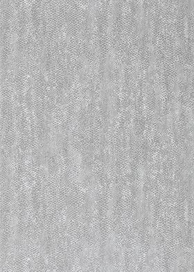 110702 Anaconda Tapeta Anthology 2
