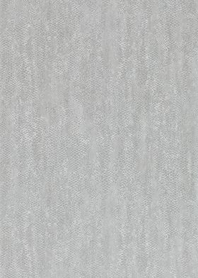 110707 Anaconda Tapeta Anthology 2