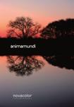 Animamundi - farba dekoracyjna z metalicznymi pigmentami Novacolor
